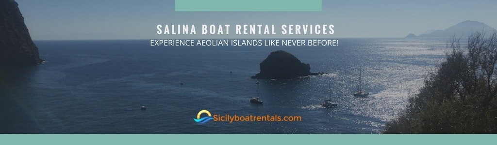 catamaran-rental-services-salina
